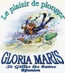 glorias maris